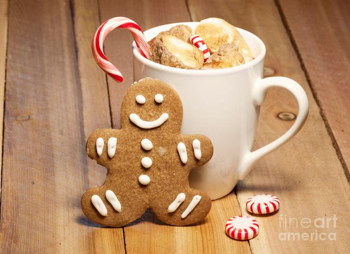 hot-chocolate-toasted-marshmallows-and-a-gingerbread-cookie-juli-scalzi